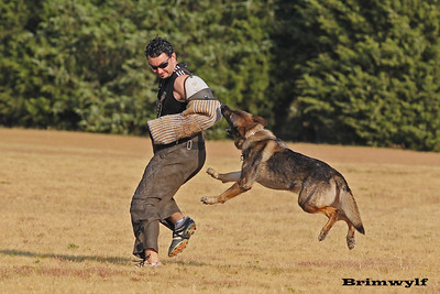 DFW Training Sept 2011