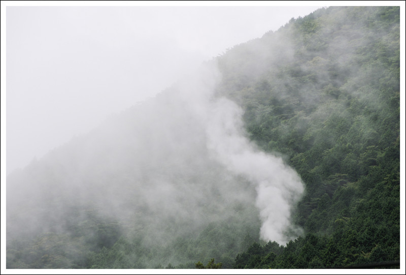 Hot spring steam in the fog, taken from our front window.