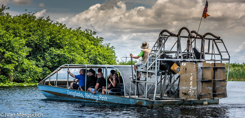 Everglades-5.jpg