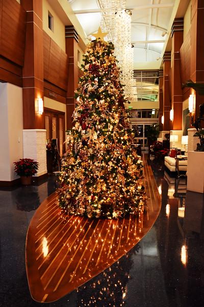 D55_0371 Sarasota Yacht Club Christmas tree.jpg