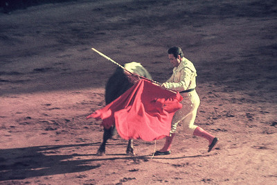 Old Bullfight Photos