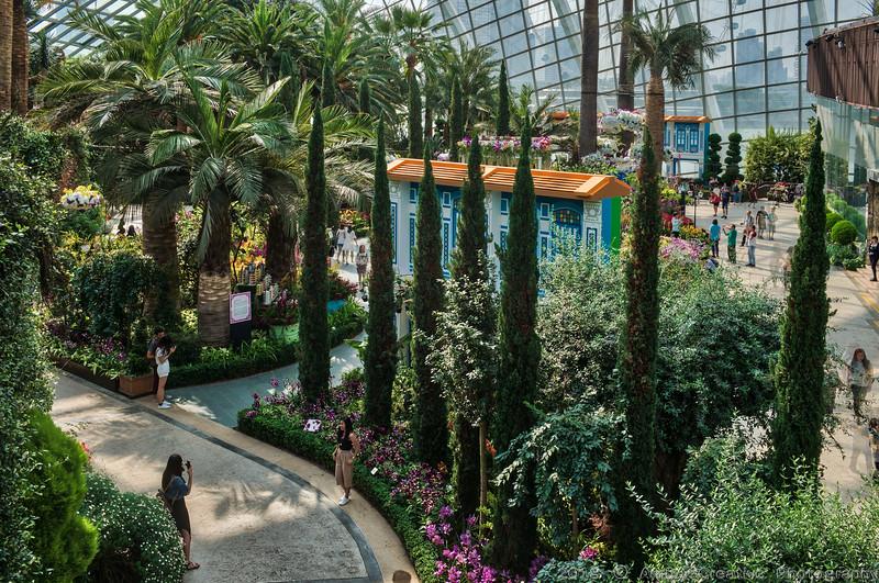 2018-07-18_FunWithFamily@GardensByTheBay_SingaporeSG_07-HDR.JPG