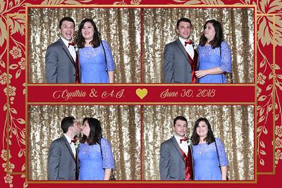 Cynthia and AJ. Wedding