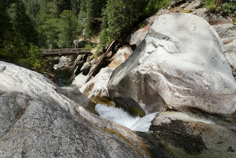 Sequoia_0554.jpg
