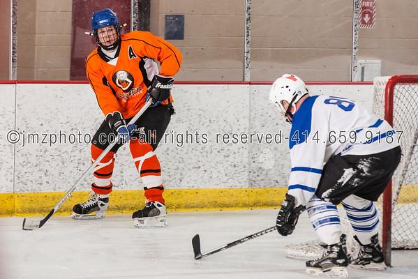recHockey Guyder WCHL_20130426