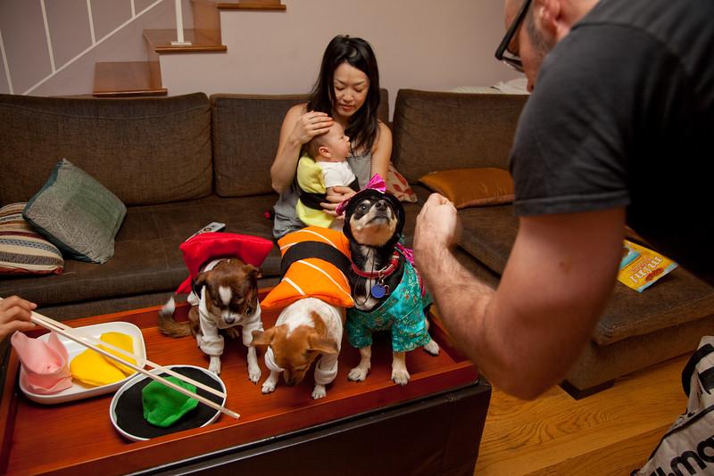 Dog-sushi-halloween-50.jpg