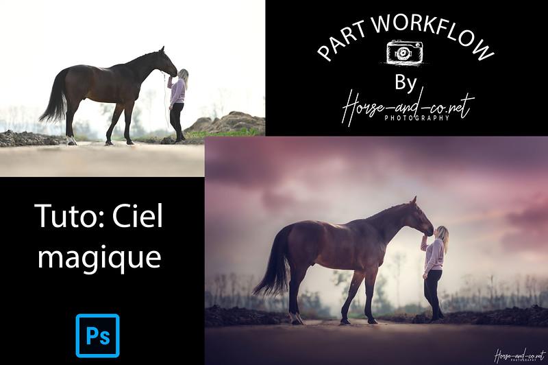 Part-worflow-Ciel-Debut.jpg