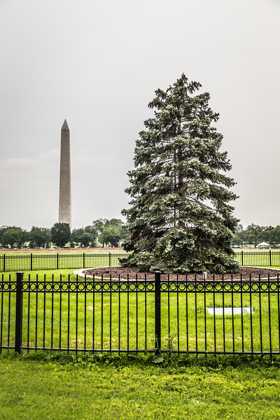 DSR_20150702Washington DC Day One28.jpg