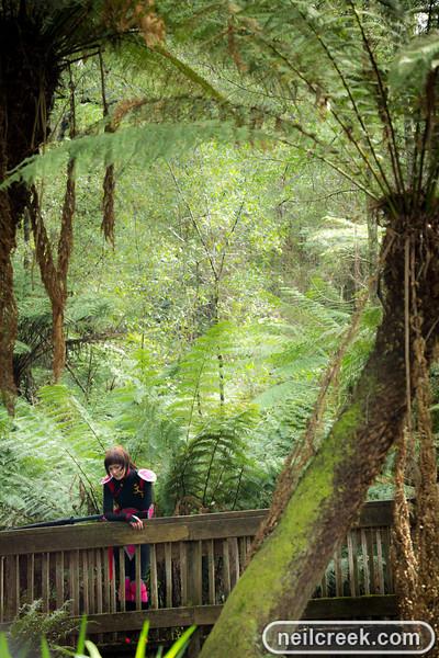 creek-130914-237.jpg