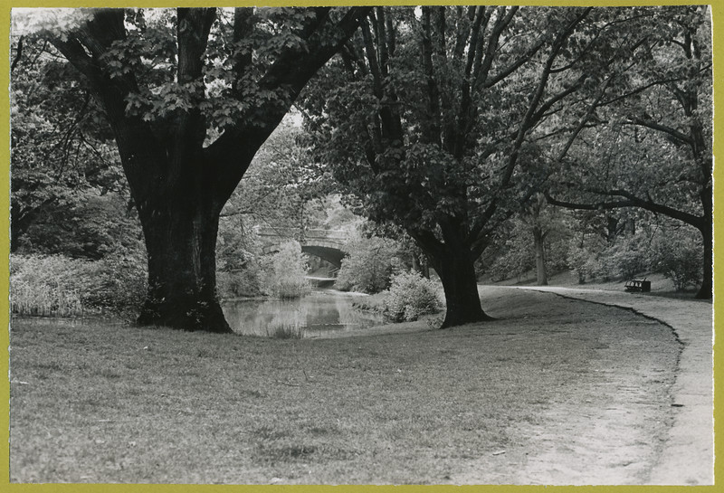 Photographs 1973_0026.jpg