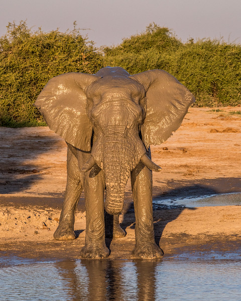 Botswana_June_2017 (4078 of 6179).jpg