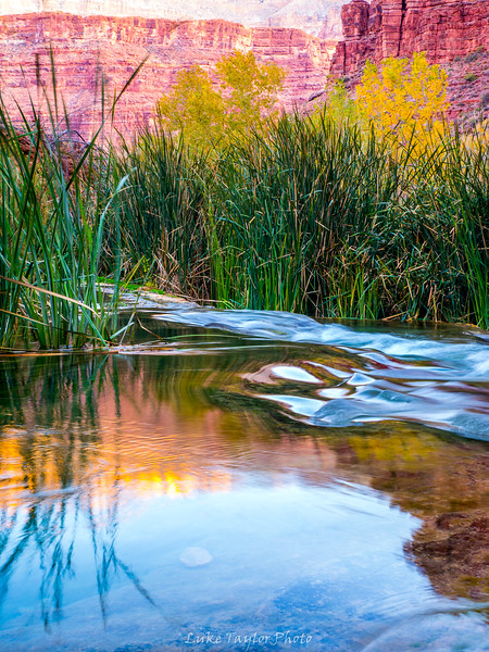 Arizona-82.jpg