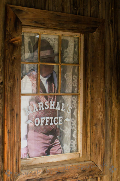 Marshall in the Window