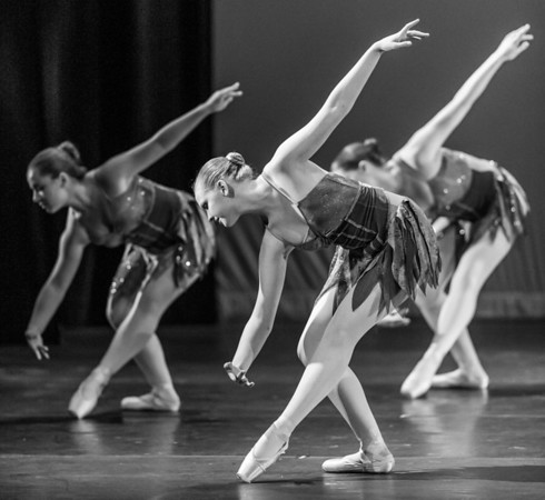 Dance/Theatre/Concert