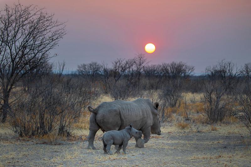 Namibia 69A7473.jpg