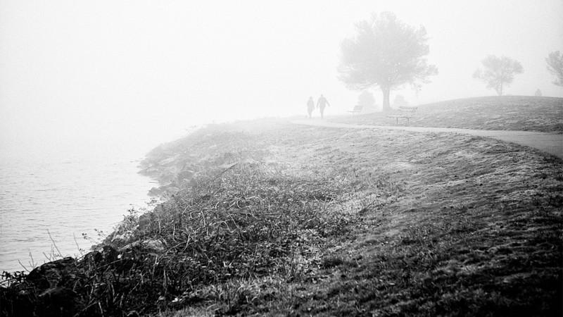 A couple walks their dog on a foggy morning along Alki Beach