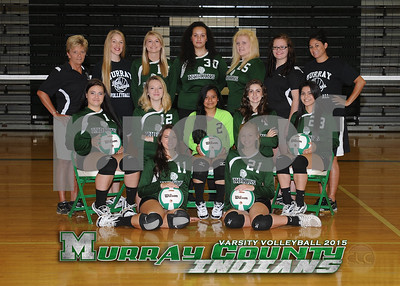 2015 - MCHS Varsity Volleyball