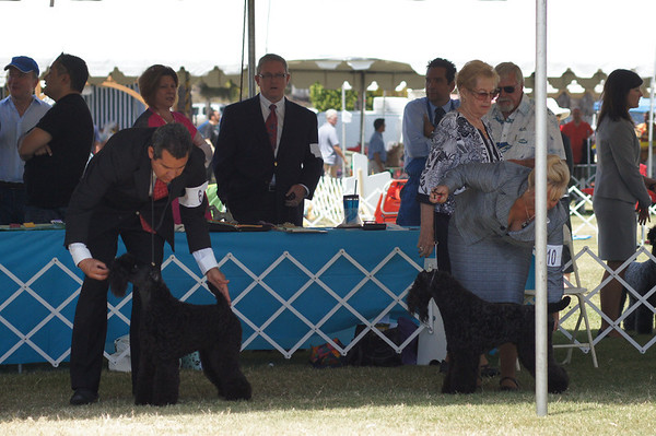 Great Western Saturday 2012
