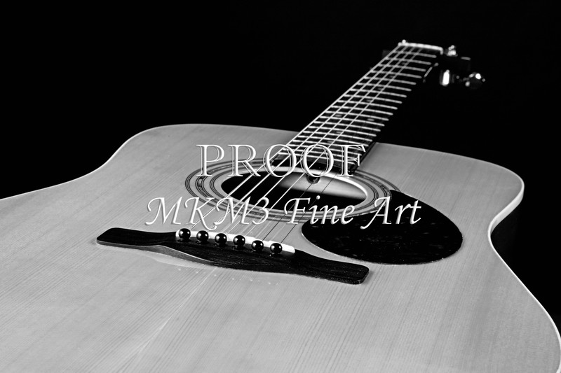 Guitar Pictures in Black and White Photographs
