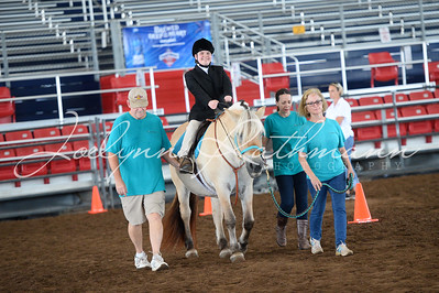 Old 300 Horse Show