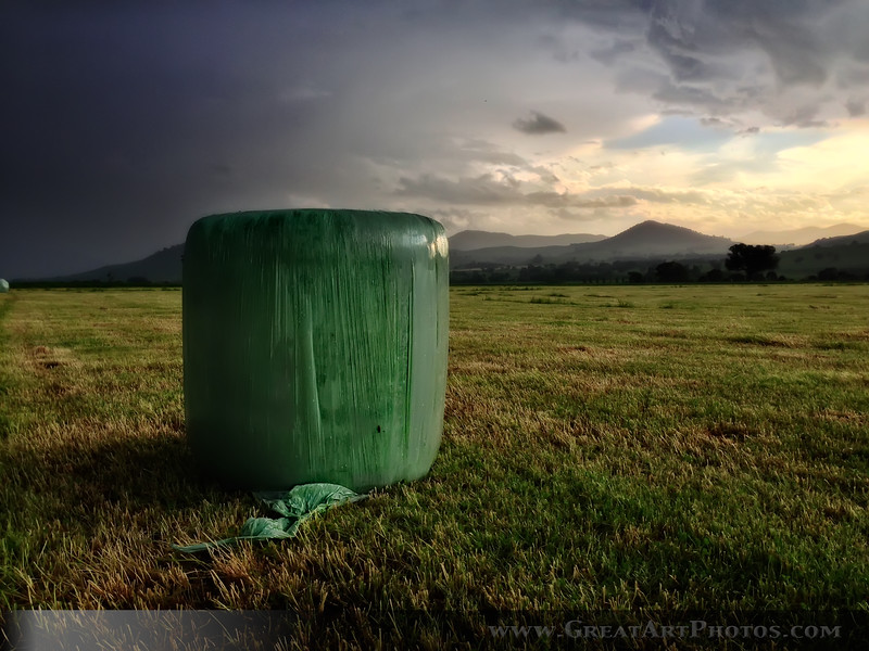 Silage before the Storm.jpg