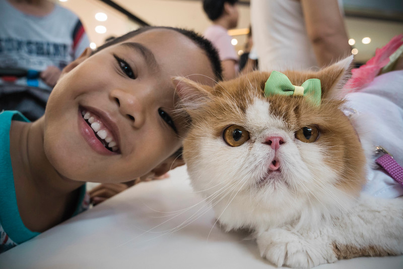 VividSnaps-The-Seletar-Mall-CAT-Dress-Up-Contest-045.jpg