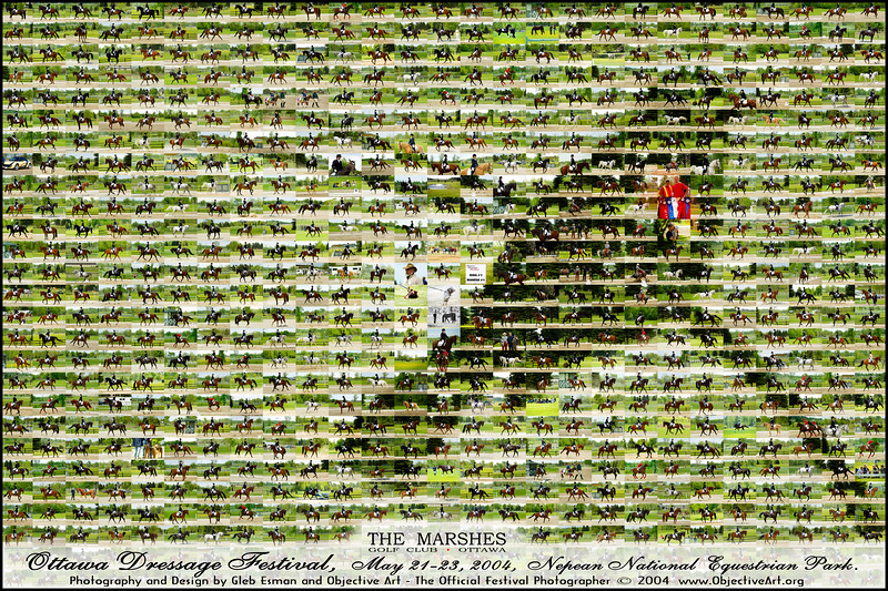 Marshes_mosaic_poster_FINAL_ENHANCED.jpg