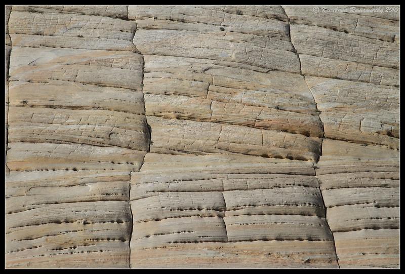 Close up of Checkerboard Mesa, Zion National Park, Utah, May 2010