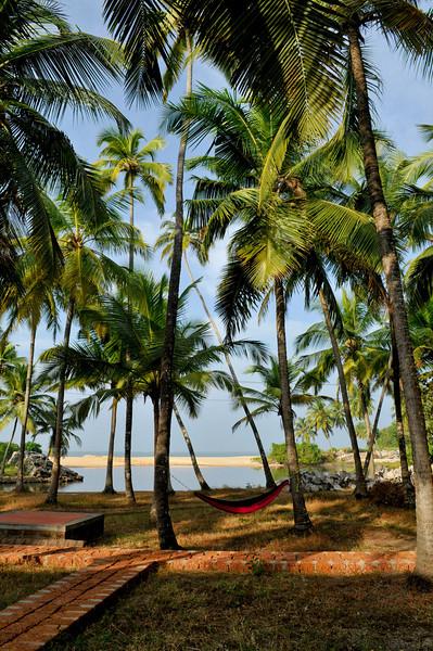_DSC4684_beach.jpg