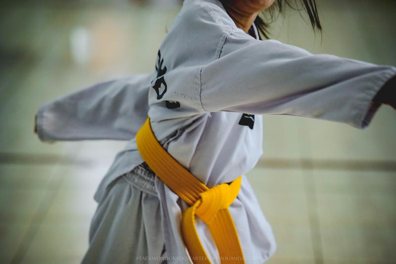 KICKSTARTER Taekwondo 02152020 0169.jpg