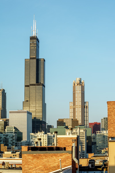 Willis Tower from the Near West Side