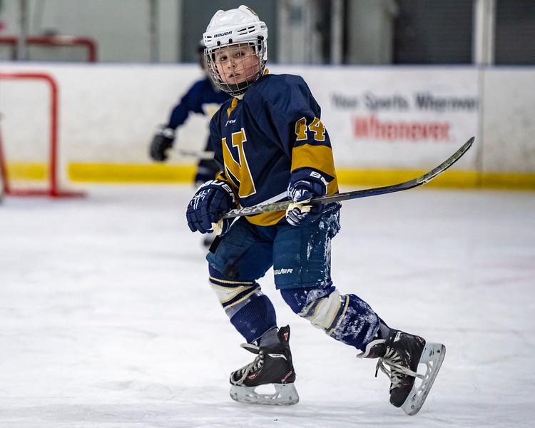 2019-02-03-Ryan-Naughton-Hockey-92.jpg