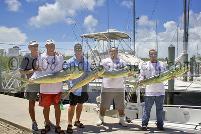 2008 Kiwanis Dolphin Tournament - Key Largo Fisheries Weigh-In