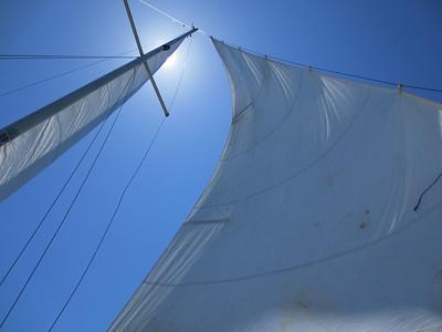 Sailboat 2013