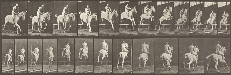 Horse Pandora jumping a hurdle, bareback with nude rider (Animal Locomotion, 1887, plate 647)