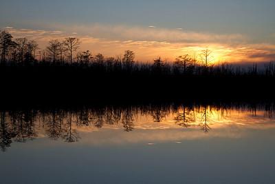 Pungo and Mattamuskeet Lakes January 7-9, 2011