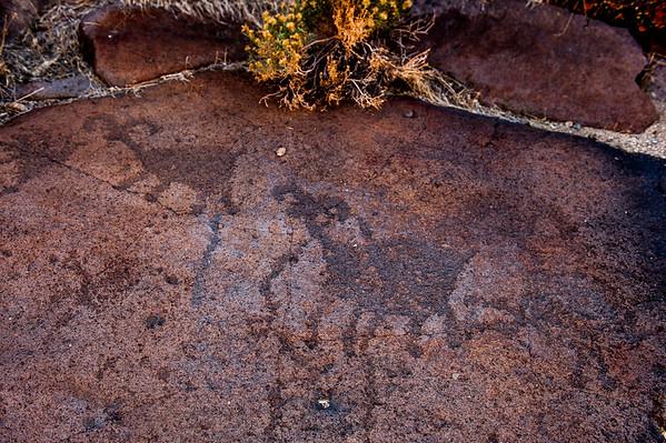 Death Valley Nov 2014