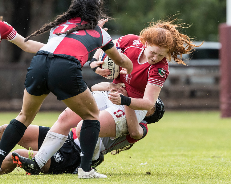 Pacific Mountain Rugby Conference: Chico State vs Stanford