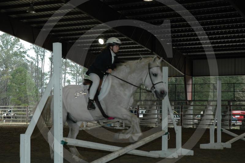 horse show '06 Live Oak