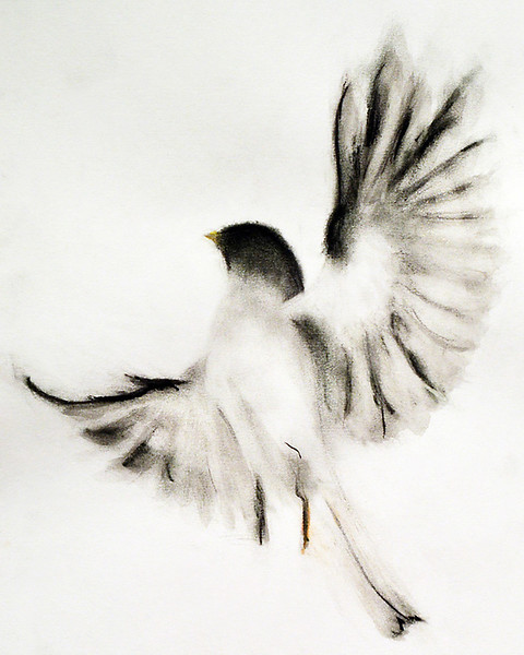 bird_af.jpg