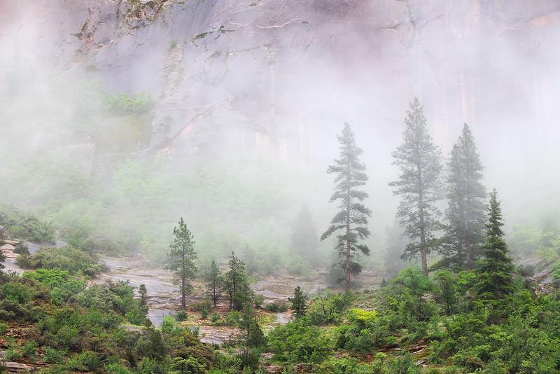 Passing Fog