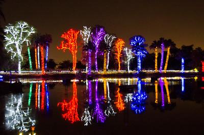 1/1/16 Zoo Lights