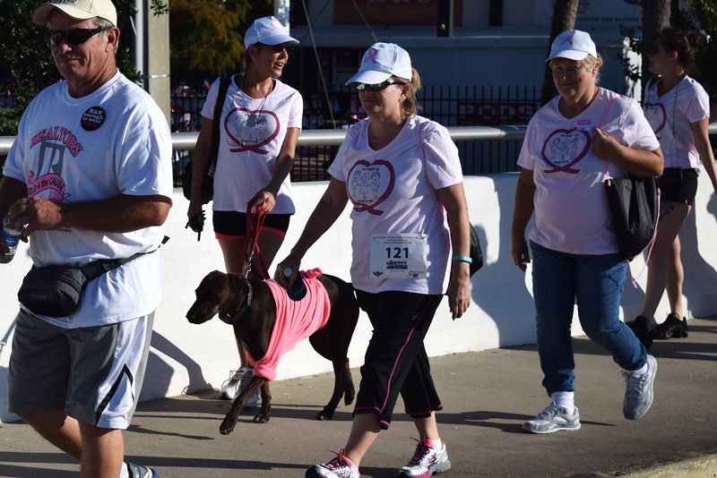 2014 Making Strides Against Breast Cancer in Daytona Beach (203).JPG
