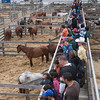 KIDS FROM SAN MATEO COUNTY SCHOOLS VISIT THE COW PALACE