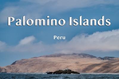 2019 02 02 | Palomino Islands