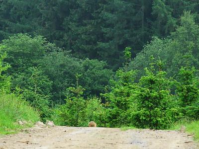 2012_06 vakantie_Ardennen