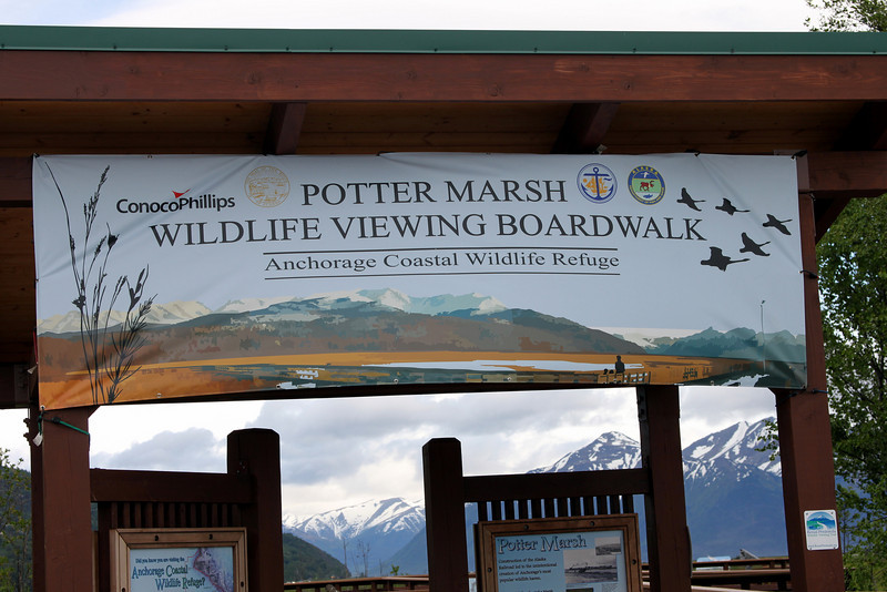 A new banner over looking the entrance to the boardwalk at Potter Marsh.
