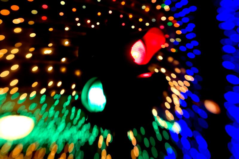 You_Can_Run_a_Red_Light.jpg