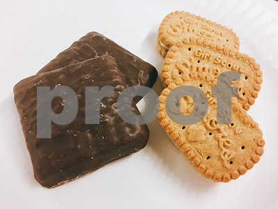 100-years-of-girl-scout-cookie-sales-will-the-new-smores-cookies-be-the-next-thin-mints
