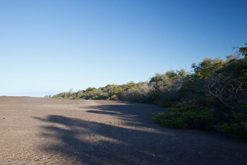 Playa Tortoga Negra, Isabela, Galapagos (11-24-2011)-1.jpg